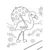 Pack 12 Un. Mi Libro de Flamencos y Otras Aves Exoticas con adhesiv